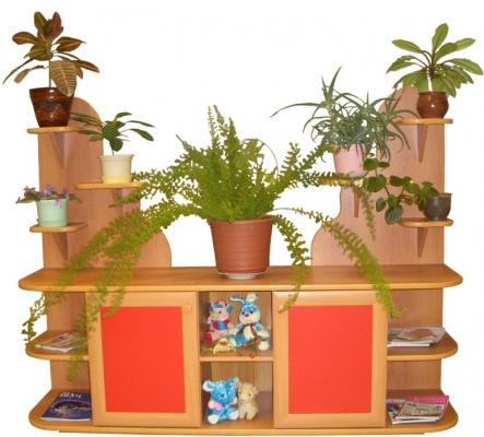 Картинки цветов для уголка природы в детском саду